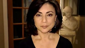 """""""Who's afraid of Sibel Edmonds?"""" When Turkey had infiltrated the US state mechanism"""